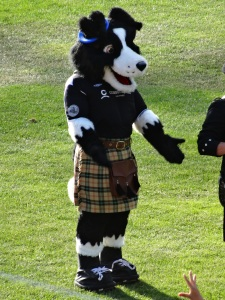 Striker, Highlanders mascot.